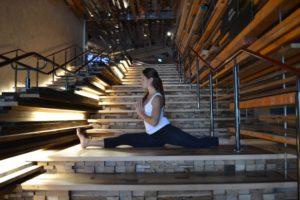 Nishi Yoga with Odona
